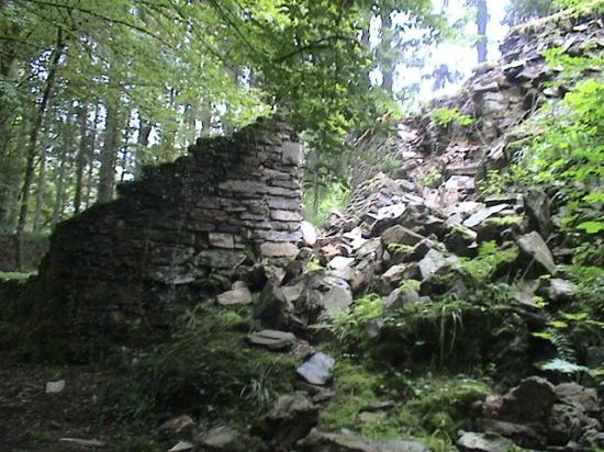 Ruines du château de Liresse